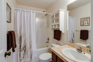 Blog- Bathroom 6/3